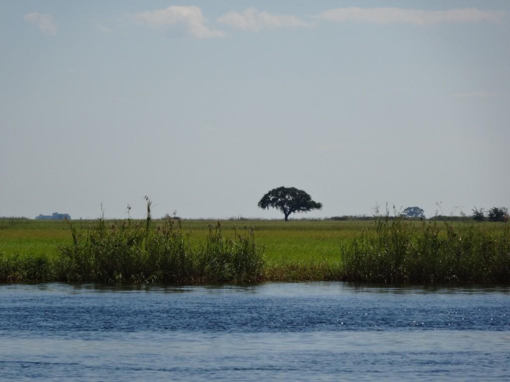Namibian side of Chobe River