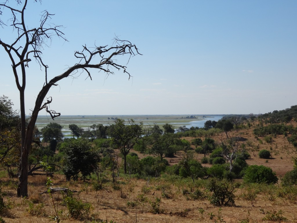 Chobe National Park by land.